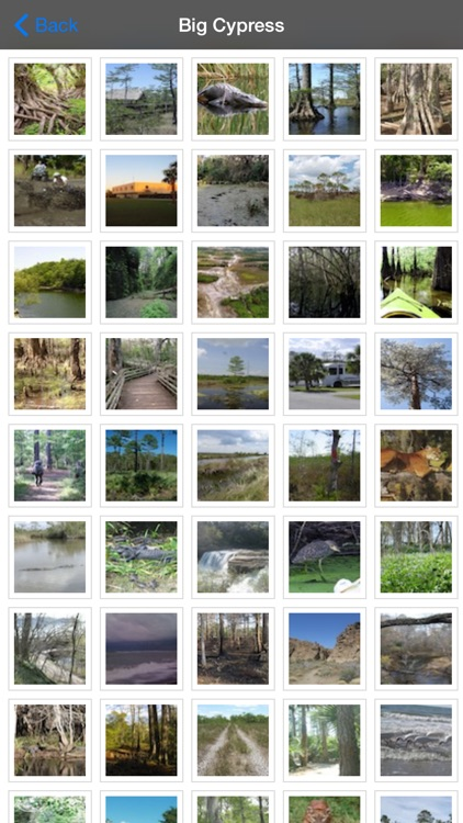 Big Cypress National Preserve screenshot-4