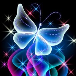 HD Wallpaper : Butterfly