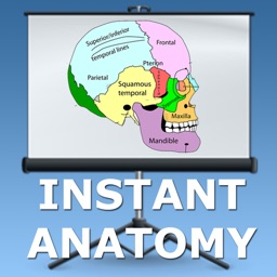 Anatomy Lectures Head and Neck