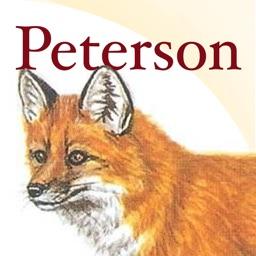 Peterson Field Guide to Mammals of North America