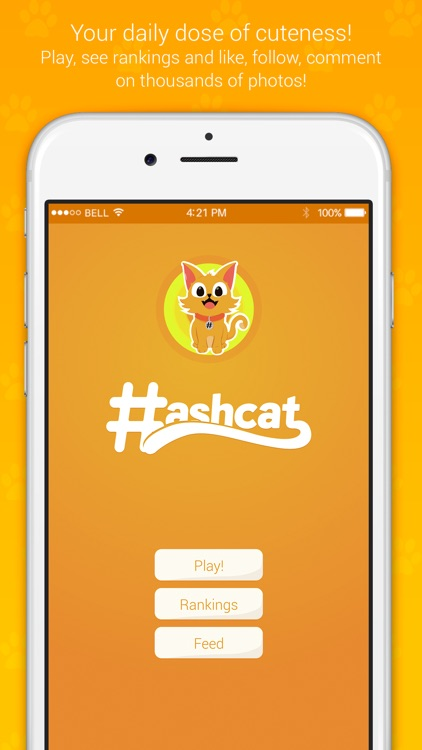 Hashcat - Cat's social network