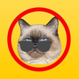 Cat Emoji Sticker Pack