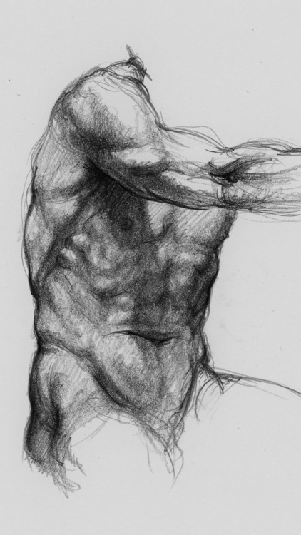 3d Anatomy For The Artist V 12 By Catfish Animation Studio