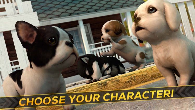 Dog Care Simulator: Save your Puppy from the Cars!