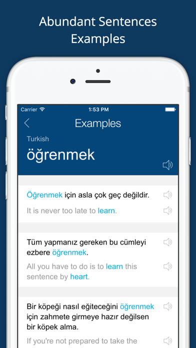 Turkish English Dictionary Pro - 窓用