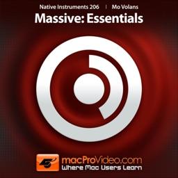 NI 206 - Massive - Essentials