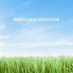 Mindfulness Meditation - Ro og centrering
