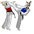 Taekwondo para Iniciantes-Guia e Lições de Vídeo icon