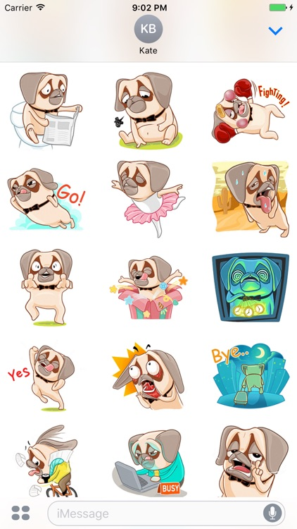 Crazy Pug - Cute dog stickers for iMessage