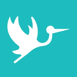 Stork App – Childcare Tracking