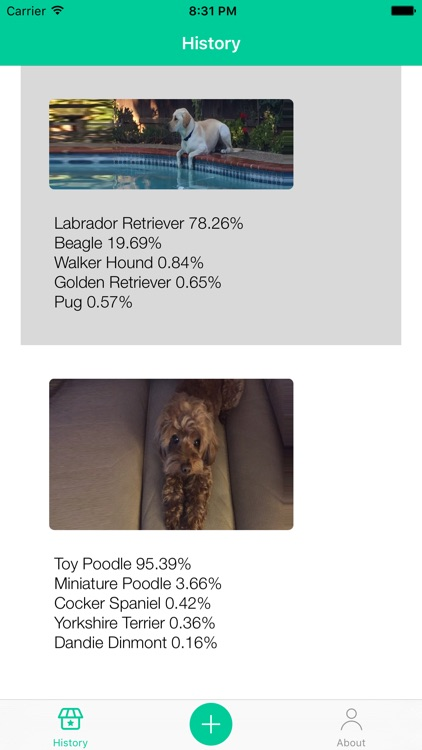 Dog Breeds Recognition by AI screenshot-3