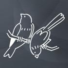 简笔画 icon