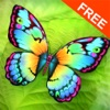 Paint Me a Butterfly! Free