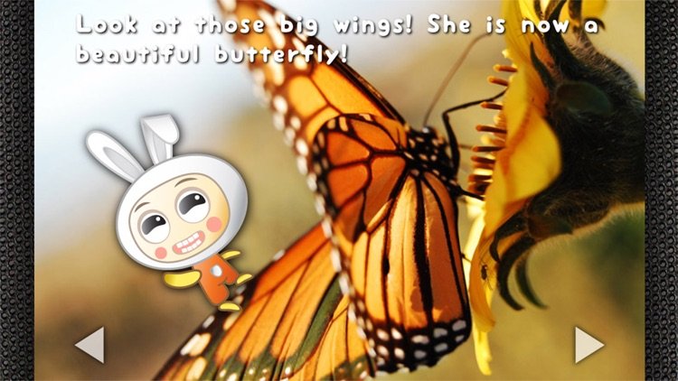 Pepa and the Butterfly - Read & Learn Storybook screenshot-4