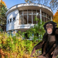 Codes for Abandoned Building Monkey Escape Hack