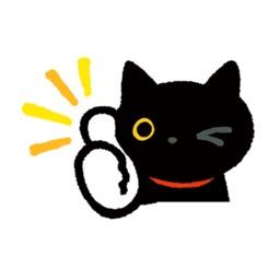 Stupid Cat Animated Stickers