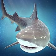 鲨鱼 模拟器 游戏 生存 比赛 - 经典 酷跑 食人鱼 3d 街机 手游 单机 中文 版 斗鱼 免费