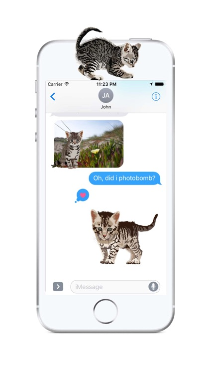 Cute Kittens - Cat Art, Stickers screenshot-2