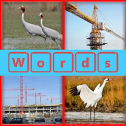 Guess the word 4 Pictures