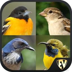 Perching Birds SMART Dictionary