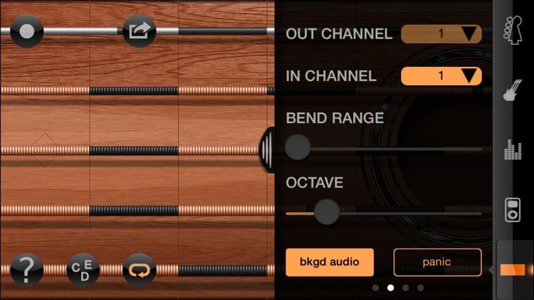 iFretless Guitar screenshot-3