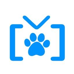 SwiArk - Dog Breed Video Directory