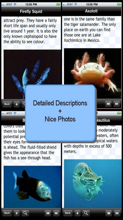 Weirdest Sea Creatures screenshot-3