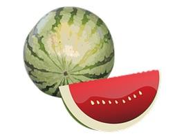 Watermelon Sticker Pack