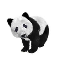 Panda Two Sticker Pack