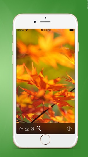 Moving Wallpaper For 10 Free Live Wallpapers App On The Store