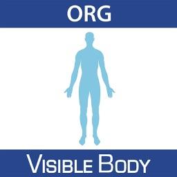 For Organizations - Human Anatomy Atlas