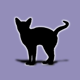 Cat Breeds - for cat lovers -