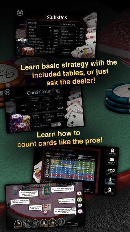Blackjack Pro: 21 Vegas Casino screenshot-3