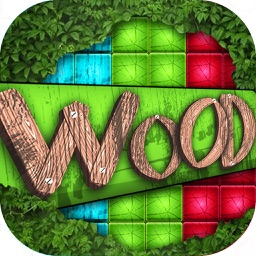 Wood Block Puzzle - Best Brick Match.ing Game