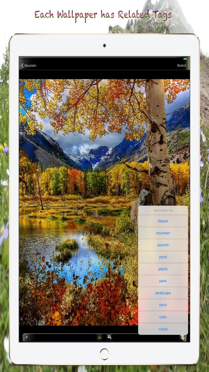Nature Wallpapers and Backgrounds for iPhone/iPad