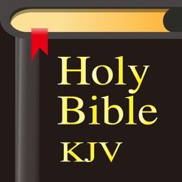 Bible-Simple Bible Advance (KJV)