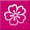 京美人 - 可愛い和の壁紙 - かわいい待ち受けで楽しもう!