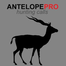 Activities of Antelope Calls & Antelope Sounds for Hunting