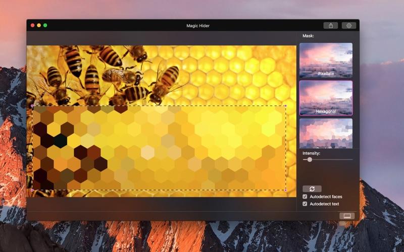 Magic Hider Lite скриншот программы 4