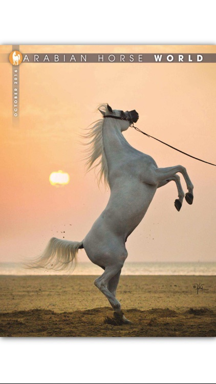 Arabian Horse World Magazine