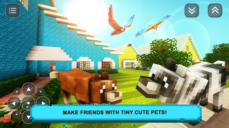 Tiny Pet Craft: Building & Making Friends