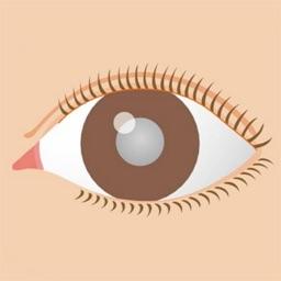 図解 白内障 イラストで見る眼疾患説明シリーズ By Fuso Precision