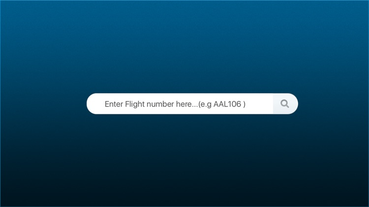 Flight Status – Flight Information