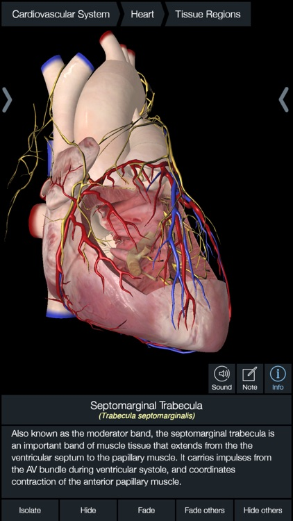 Essential Anatomy 5 screenshot-4