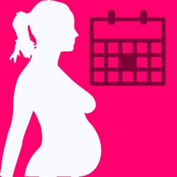 Pregnancy Due Date Widget