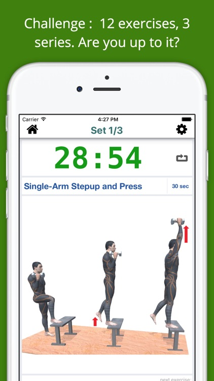 30 Min Dumbbell Workout Challenge PRO Weight Loss