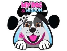 My Dog In The Window has been putting smiles on peoples faces since 2014