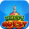 Teddy Quest