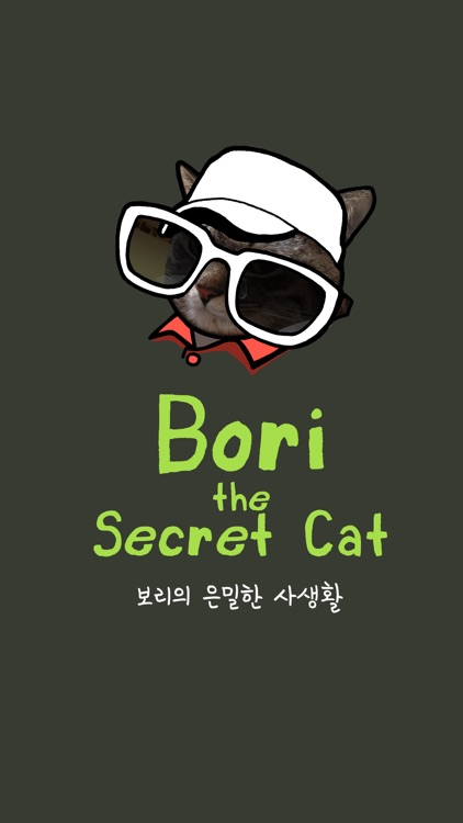 Bori The Secret Cat
