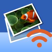 Wireless Transfer App app review
